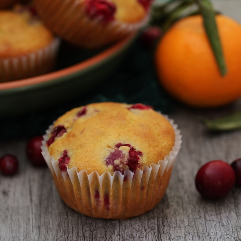 A Zesty Cranberry Orange Muffin ready for eating.