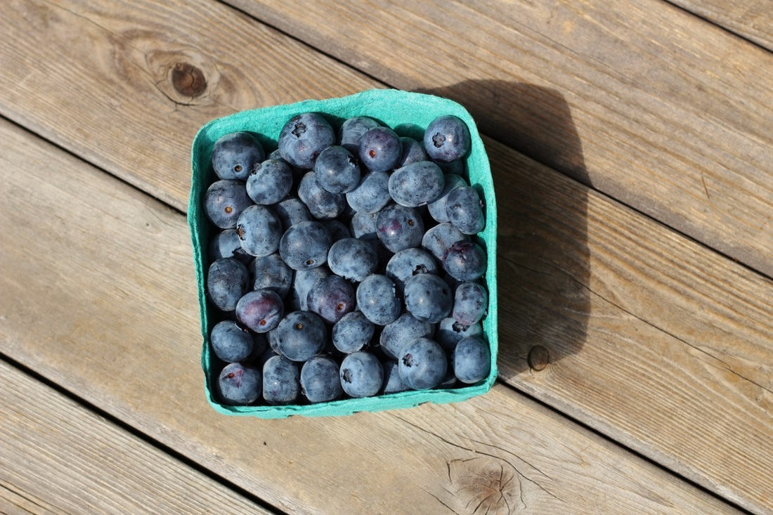 A box of freshly picked blueberries.
